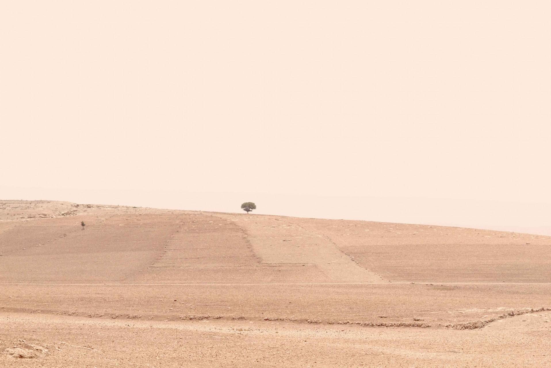 2014surex_maroc05-agneslegros-website